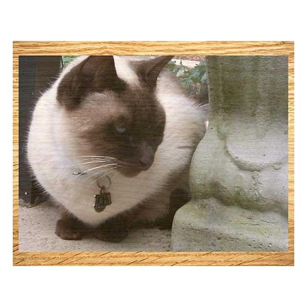 Photoprint Wood (20x16)